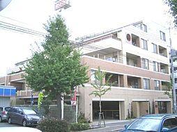 KAISEI武庫之荘ノステール[303号室]の外観