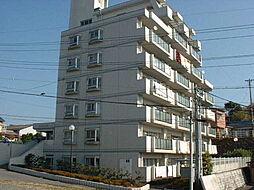 ハムステッドコート[6階]の外観