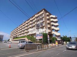 サンシティ箱崎九大前[4階]の外観