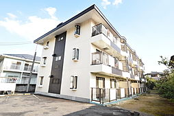 埼玉県越谷市越ヶ谷の賃貸マンションの外観