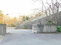 南部中学校1319m