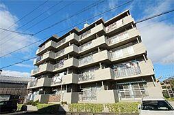 愛知県名古屋市中川区西中島1丁目の賃貸マンションの外観