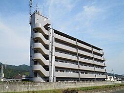 ココ川崎[203号室]の外観