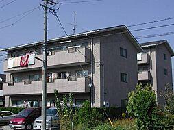 セレクトA・B[4階]の外観