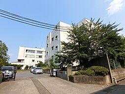 [一戸建] 埼玉県越谷市袋山 の賃貸【/】の外観