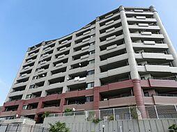 ホワイトキャッスル小森江東[10階]の外観