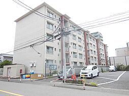 戸田南町住宅[106号室]の外観