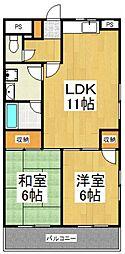 マンションニューフォレスト[2階]の間取り