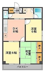 東京都江戸川区北小岩1丁目の賃貸マンションの間取り
