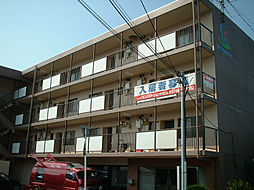 滋賀県野洲市三上の賃貸マンションの外観