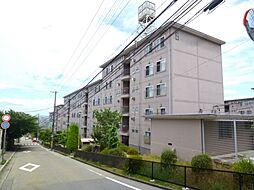 兵庫県宝塚市宝梅2丁目の賃貸マンションの外観