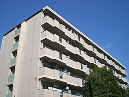リバージュ住吉[6階]の外観