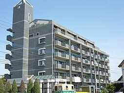 クロスロード[4階]の外観