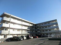 埼玉県鴻巣市天神2丁目の賃貸マンションの外観
