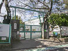 杉並区立三谷小学校 距離480m