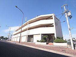 第3岩井ハイツ[1階]の外観
