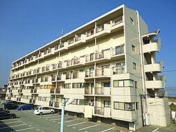 福岡県北九州市若松区小石本村町の賃貸マンションの外観