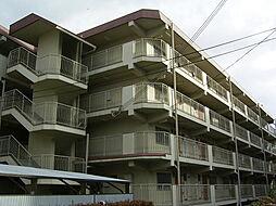 河内花園徒歩5分 西岩崎コーポ[407号室]の外観