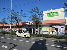 コープ青梅新町店まで580m、ふだんの食品のお買物はこちらへ。道路を隔ててドラッグストアもあります。