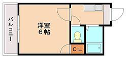 メゾンシンセイ[1階]の間取り