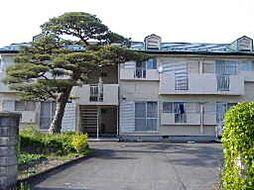 平泉駅 3.8万円