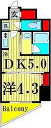 ラフィスタ北綾瀬 5階1DKの間取り