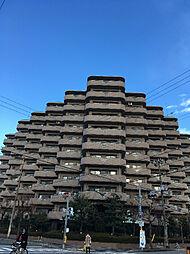 クリアクレセント住之江[9階]の外観