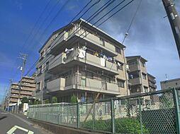 千葉県船橋市印内3丁目の賃貸マンションの外観