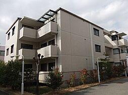 メゾンドール広田[0302号室]の外観