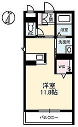 徳島県徳島市蔵本町3の賃貸マンションの間取り