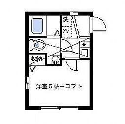 Colorz Hiyoshi(カラーズヒヨシ)[203号室号室]の間取り