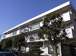 東京都杉並区桃井2丁目の賃貸マンションの外観
