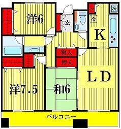 東京都墨田区堤通1丁目の賃貸マンションの間取り