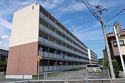 ビレッジハウス栗面 1号棟[5階]の外観