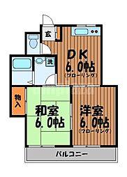 サンハイツ吉祥寺2号館[1階]の間取り