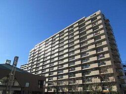 ライオンズマンションニューシティ蟹江二番館[13階]の外観