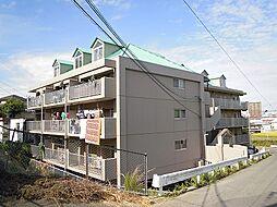 コーポ円城寺[305号室]の外観