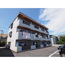 サンハイツ須賀[202号室]の外観
