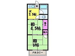 愛媛県松山市中村5丁目の賃貸アパートの間取り