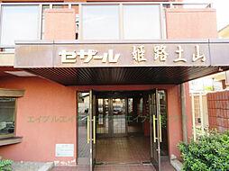 兵庫県姫路市土山6の賃貸マンションの外観