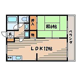 広島県広島市東区戸坂くるめ木1丁目の賃貸アパートの間取り