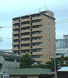 パレグリシーヌ 高井田 高井田5分[11階]の外観