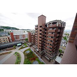 JGMロイヤルヒルズ長丘の杜[4階]の外観