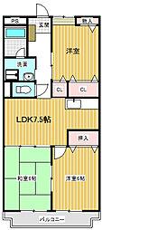 リンピアTOMO(上徳間)[203号室号室]の間取り