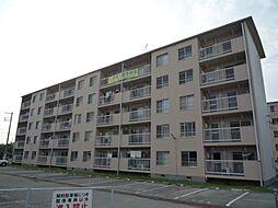 石守住宅[C11-402号室]の外観