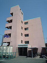 パインエクセル[3階]の外観
