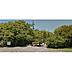 周辺,ワンルーム,面積21.11m2,賃料3.0万円,JR室蘭本線 東室蘭駅 徒歩13分,,北海道室蘭市中島町1丁目