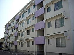 桜ヶ丘マンション[E250号室]の外観