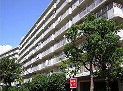 今津浜パークタウン13号(UR)[501号室]の外観