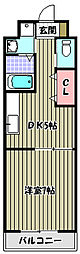 マイステージ[3階]の間取り